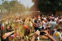 Festival Holi 11