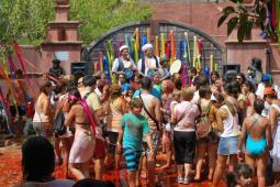 Festival Holi 13
