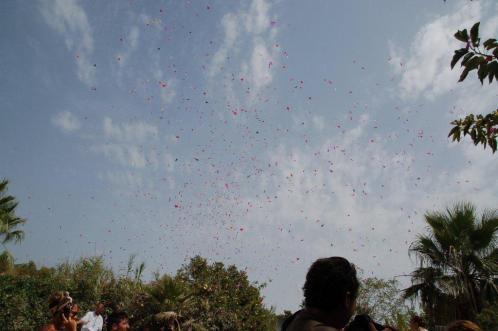 Festival Holi 4