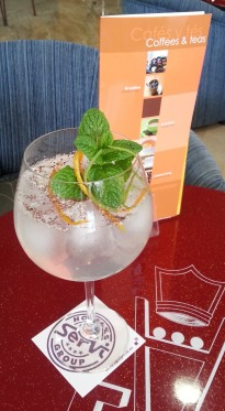 Cócteles y Gin Tonics Hoteles Servigroup 18