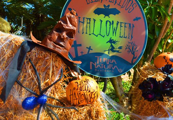 Terra Natura Benidorm celebrará Halloween con magia, pasaje del terror, talleres y cuentacuentos