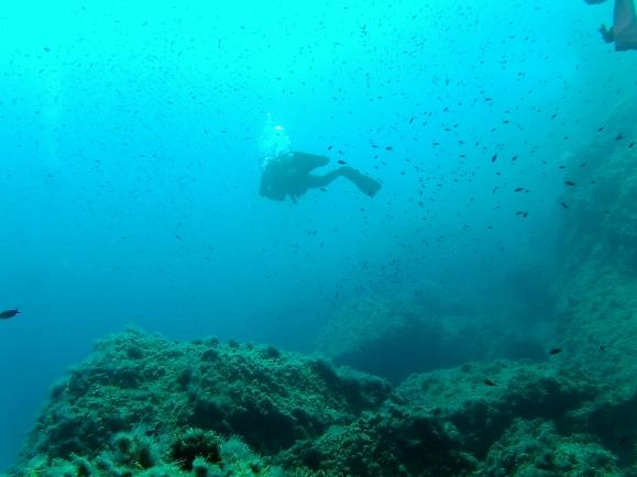 Diving in Benidorm24.JPG