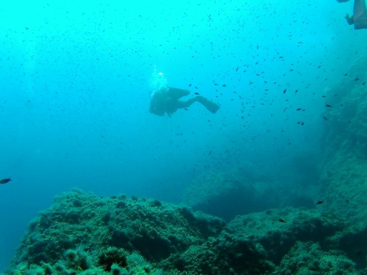 Diving in Benidorm24
