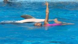 """6 nadadoras de natación sincronizada se convertirán en auténticas ondinas que """"bailarán"""" junto a los delfines de Mundomar al ritmo de distintos estilos musicales"""